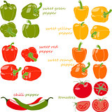 Set of vegetables with captions, vector illustration, isolated, on white background