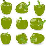 Pepper, set of green peppers, vector illustration on a transparent background