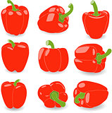 Pepper, set of red peppers, vector illustration on a transparent background