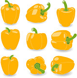 Pepper, set of yellow peppers, vector illustration on a transparent background