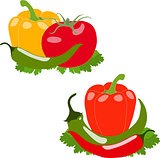 Set of peppers and tomato, vector illustration, isolated, on white background