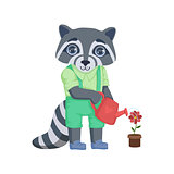 Boy Raccoon Watering The Flower