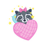Girl Raccoon Sleeping
