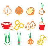 Onion, spring onions colorful icons set