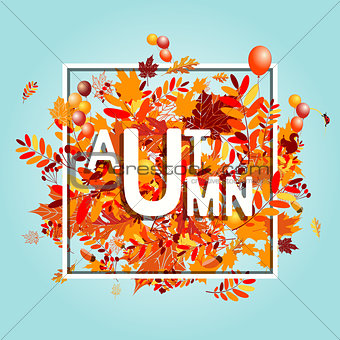 Autumn foliage, banner for your design