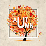Autumn tree, banner on grunge paper for your design