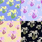 set of colored lily flowers seamless vector illustration