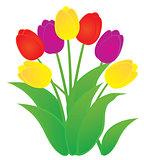 vector tulip flowers