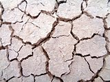 Dry, cracked ground
