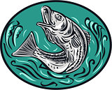 Rockfish Jumping Color Oval Drawing