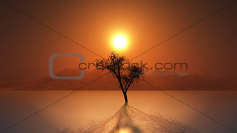 3D render of old tree at sunset