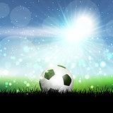Soccer ball in grassy landscape