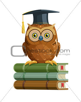 Clever owl sitting on books. Education.