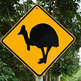 Cassowary crossing sign.