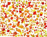 Digital Autumn Background