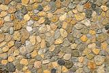 Sea Shell Rocks
