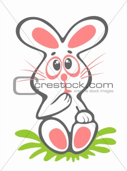 timid easter rabbit