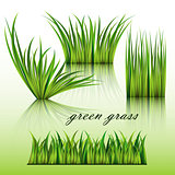 Fragments of the green grass isolated on green background.