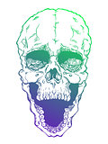 Terrible frightening skull. Creepy illlustration