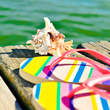 flip-flops and conch on a wooden pier