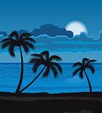 Night summer beach