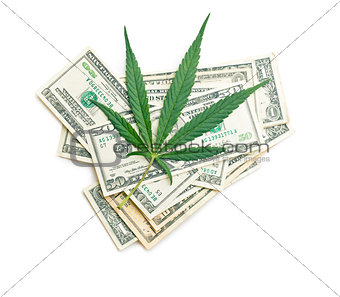 cannabis leaf and money