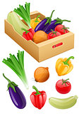 Organic vegetables. Fresh agriculture harvest in cardboard box