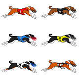 basenji dog racing set 01