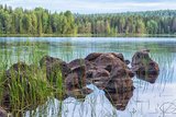 Lake with Rocks and Forest