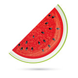 Watermelon slice. Watermelon Icon Isolated on White.