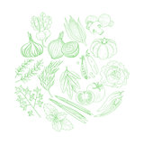 Set Of Vegetables Hand Drawn Artistic Sketch