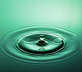 Emerald Jewel - Water Drop Photography