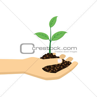green plant in hand.