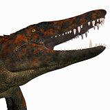 Uberabasuchus Dinosaur Head