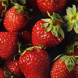 Ripe Strawberry Served on Ice Close-up