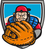 Chimpanzee Baseball Catcher Glove Shield Retro
