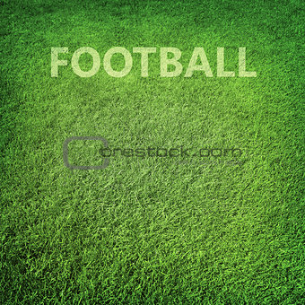 Green grass football background