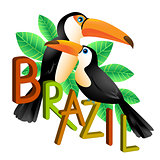Two colorful toucans sitting on a branch. Brazil