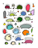 Funny hedgehog collection, sketch for your design