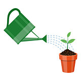 Watering can and plant in the pot.