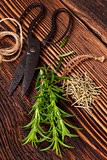 Fresh and dry rosemary herb.