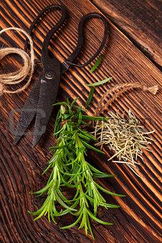 Fresh and dry rosemary herb.