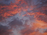 Dramatic purple sky and red gray cloudy at sunset