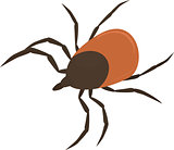Vector illustration of brown tick