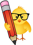 Chick with pencil
