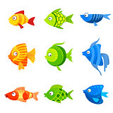 Colorful Fish Set