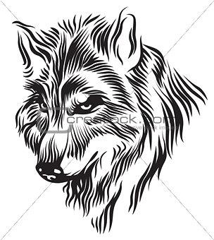 Black white wolf head