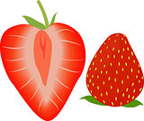 Strawberry whole and half. Vector illustration