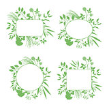 Set of green round and square vector frames