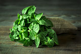 Fresh mint leaves on wooden background